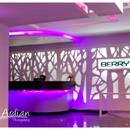Berry Hotel Bali – Bali Villa and Hotel Photographer