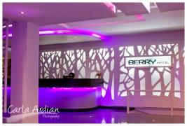 berry03